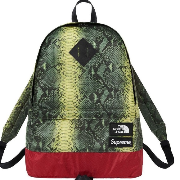 b862821db4ad Snake pattern Supreme x The North Face Backpack